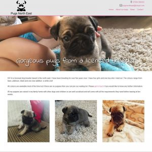 Pugs North East
